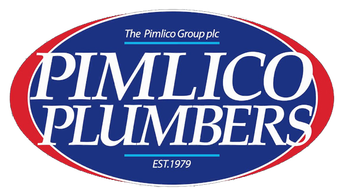 Pimlico Plumbers to bring in 'no jab, no job' employment policy